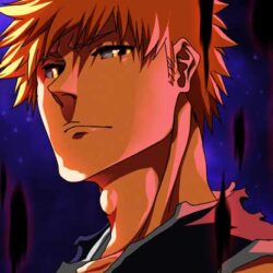 Bleach-Anime-Return