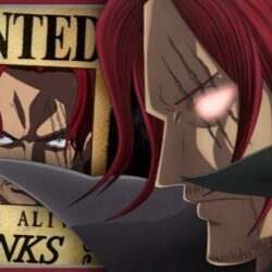 Top 10 Highest Bounty in One Piece 2020